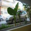 Renault Scenic Фаза 2