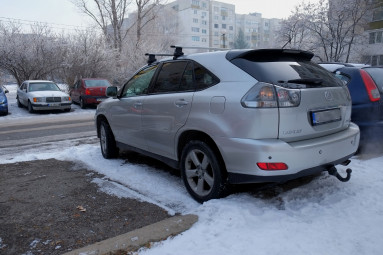 Lexus - RX - 300   Jan 6, 2019