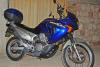 Honda - Transalp - XL650V