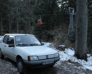 Peugeot - 205   18 Jan 2014
