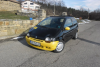 Renault - Twingo - c3g