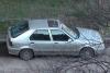 Renault - R 19